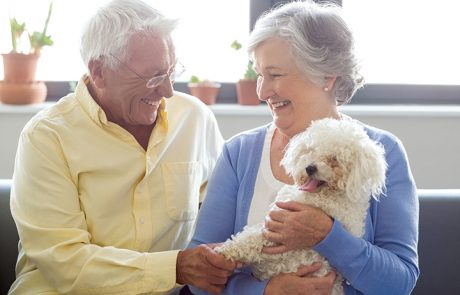 Ways Pets Improve Overall Well-Being